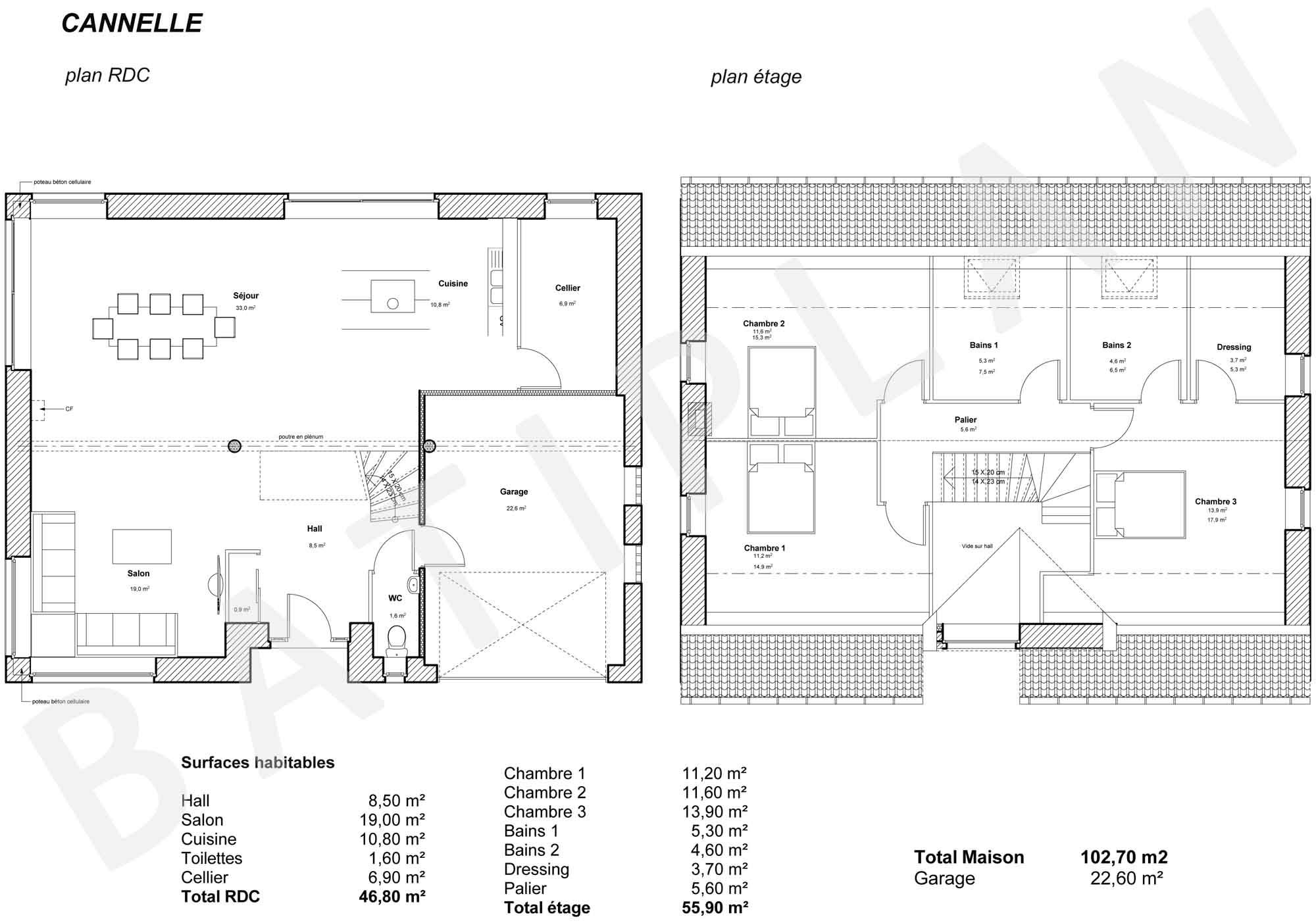 Plan de maison cannelle